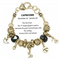 Zodiac Theme Bracelet